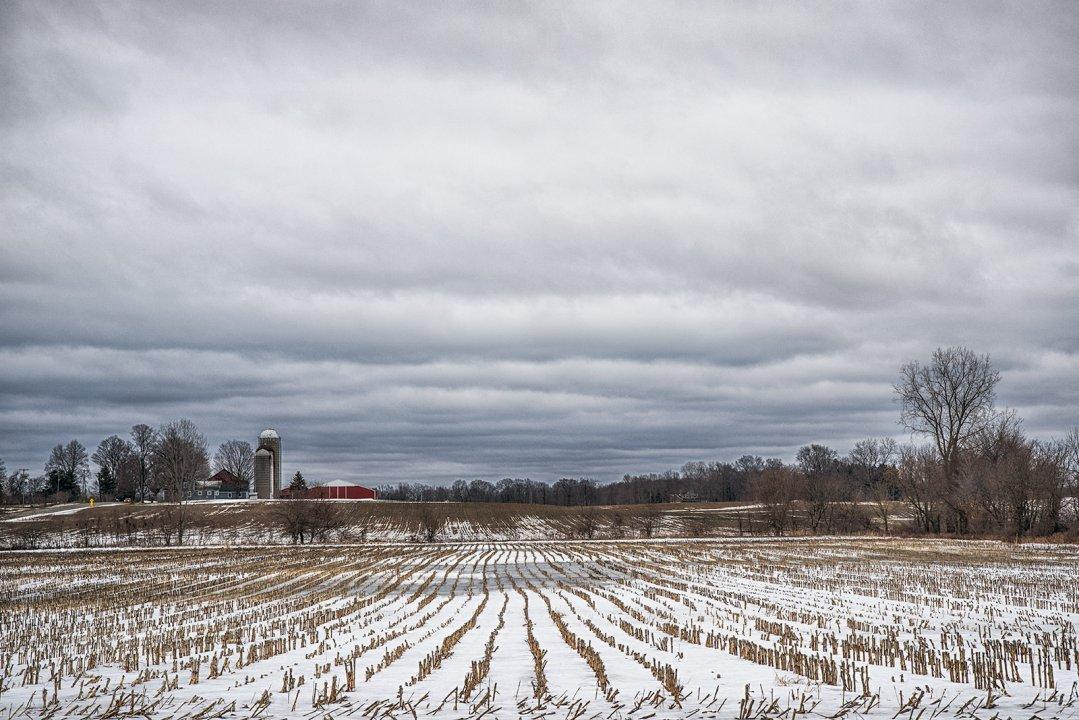 Farm In February II