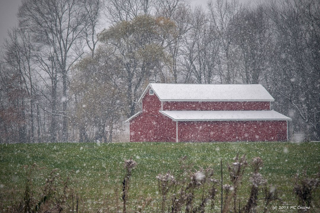 Modern Barn In A Snow Squall