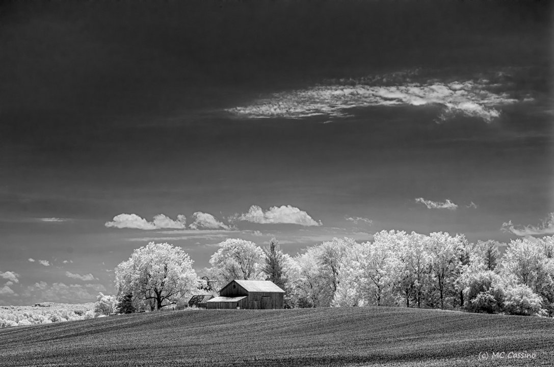 Barn With Bare Earth
