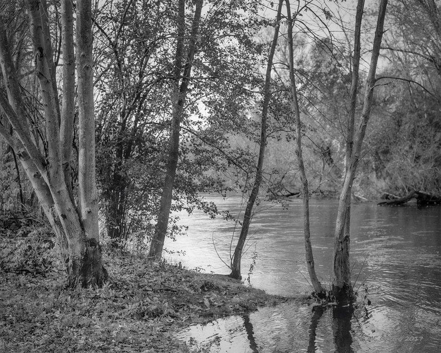 Kalamazoo River Near the Fort Custer Boat Launch