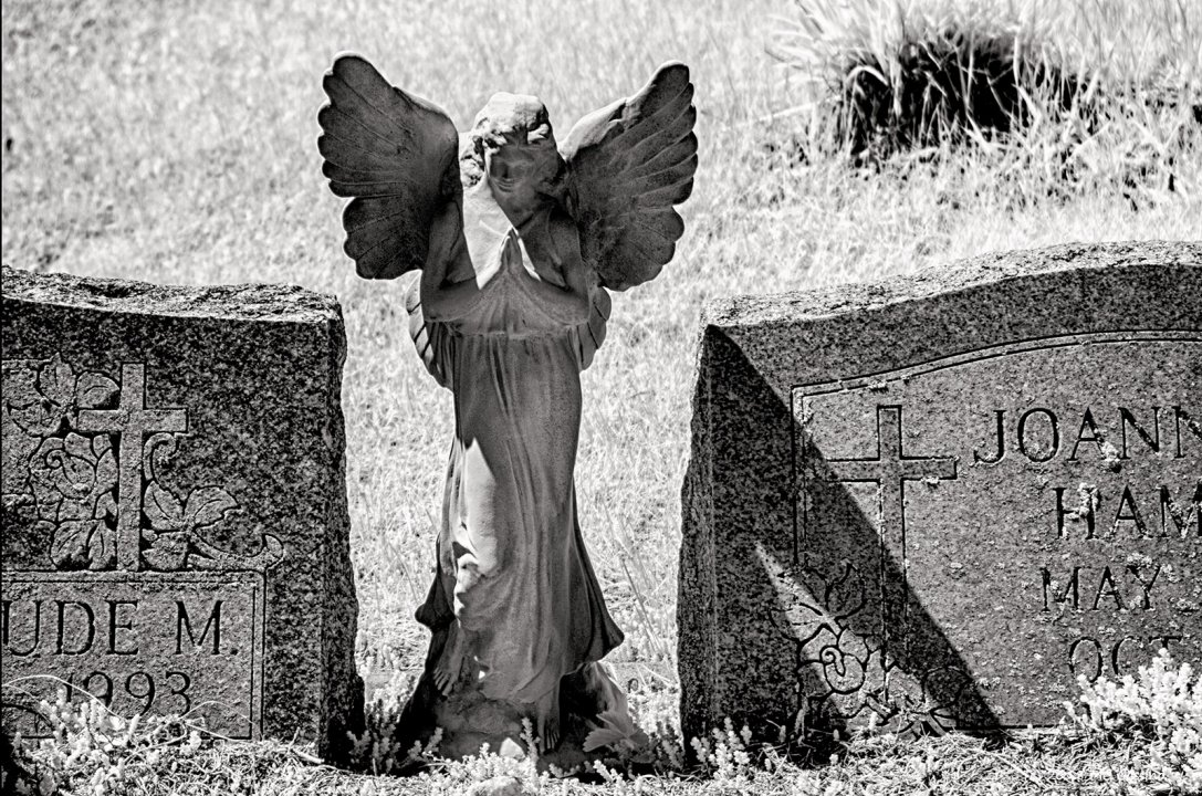 Infrared Angel