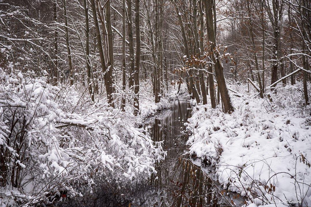 Winter Creek II