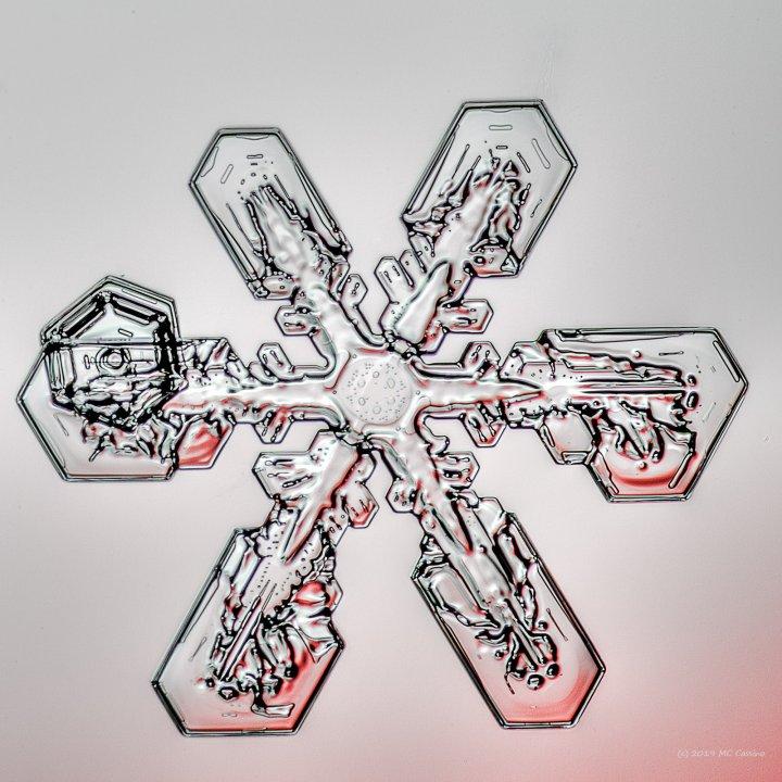 Snowflake Macro