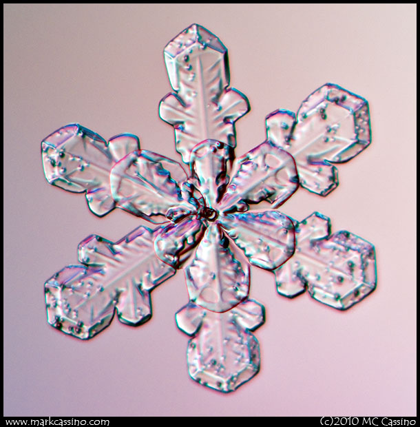 Snow Crystal Photograph