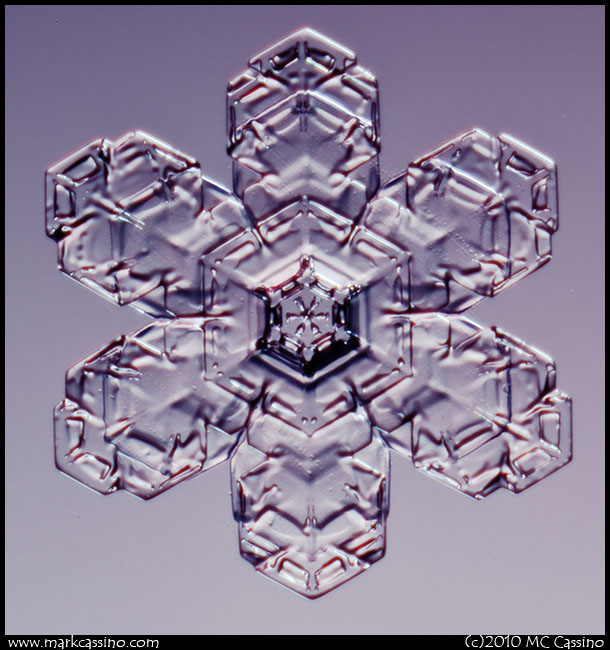 Snow Crystal Photo