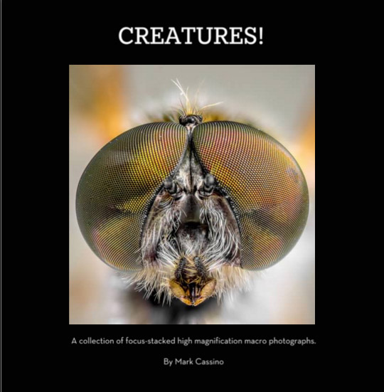 Creatures Book Cover