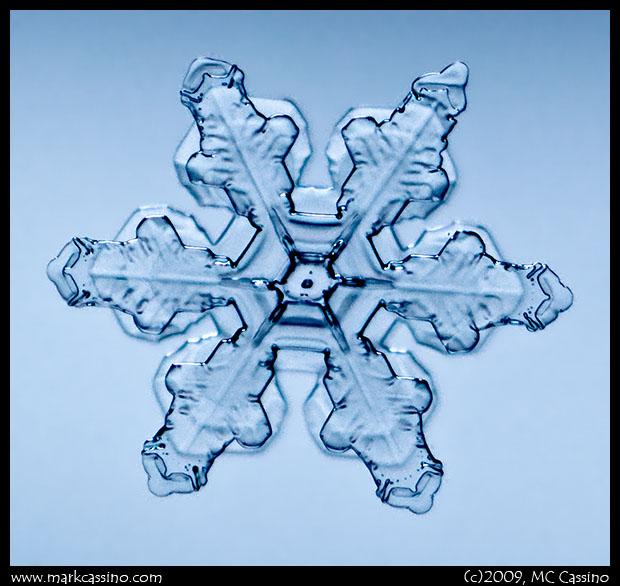 Snow Crystal Photo
