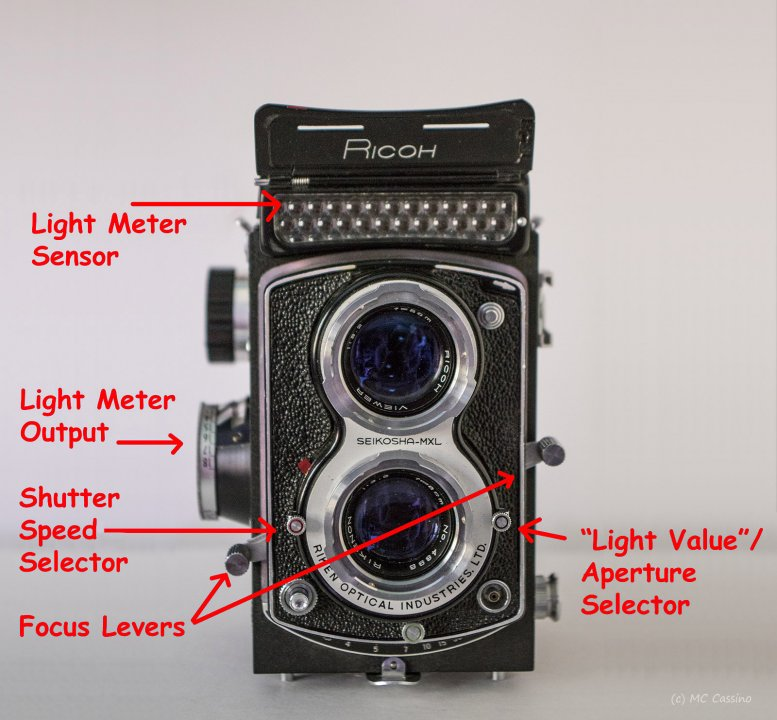 Hands On With the Ricoh Diacord L TLR