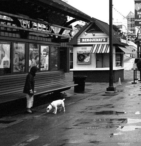 Chicago - Rainy Day on Navy Pier