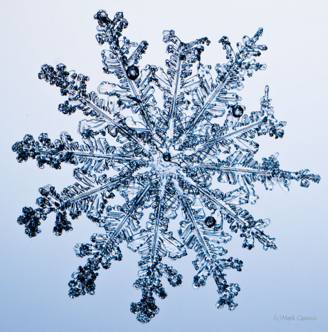 High magnification photo on an actual snowflake / snow crystal.f