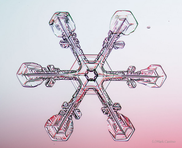 High magnification photo of an actual snowflake / snow crystal.