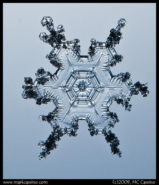 Snow Crystal Photograph