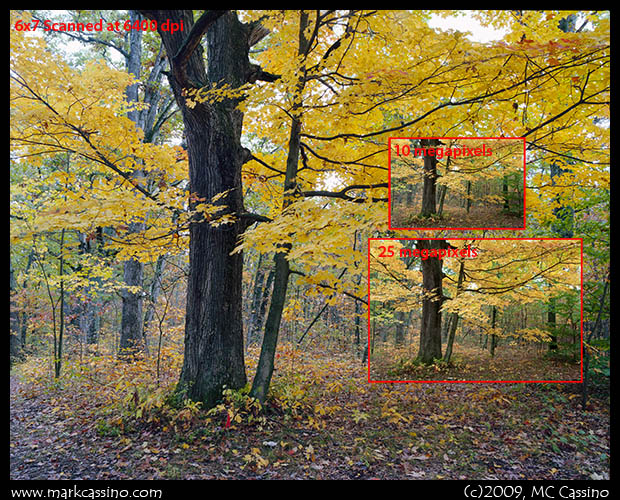 Image Size Comparison - Medium Format vs. Digital